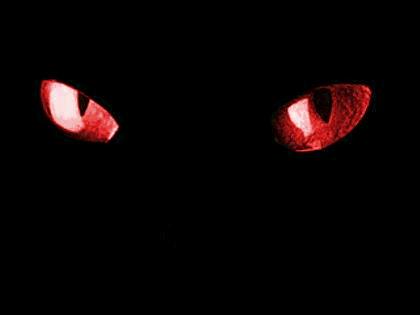 File:Eyes.png