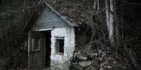 Dark Woods: The Elmridge Grasp