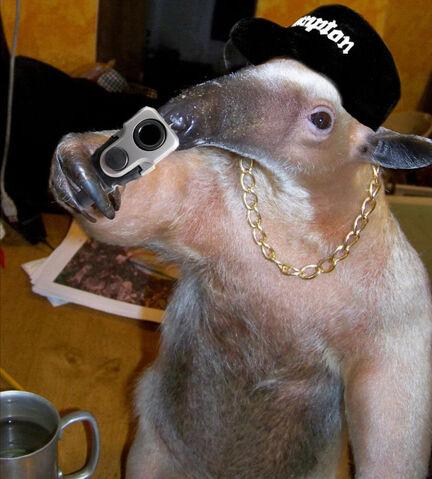 File:Compton-anteater.jpg