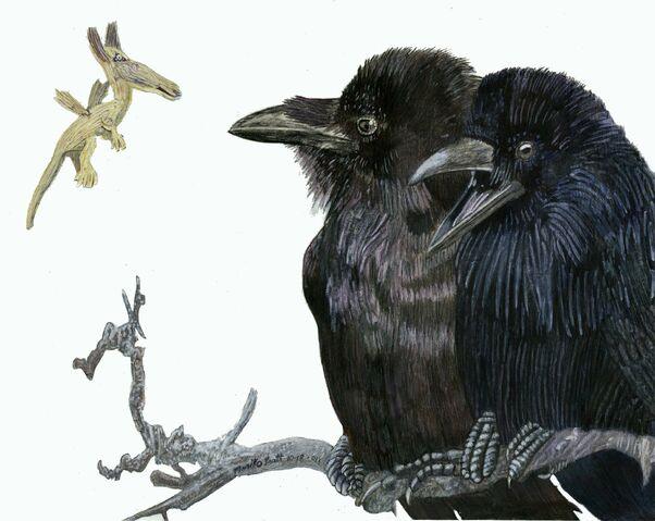 File:Ravens.jpg
