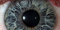 Staring