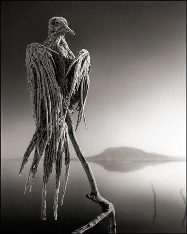 File:Clay bird.jpg