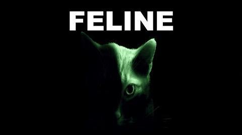 FELINE by Killahawke1 - CREEPYPASTA-0