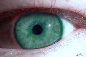 File:My teal eye.jpg