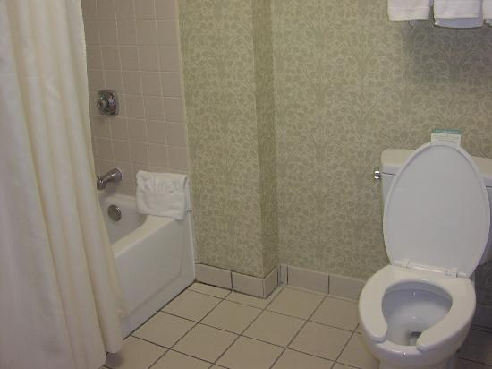 File:Simple-bathroom-photos.jpg