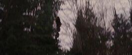Renesmee saltando.jpg