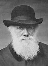 Darwin1880.jpg