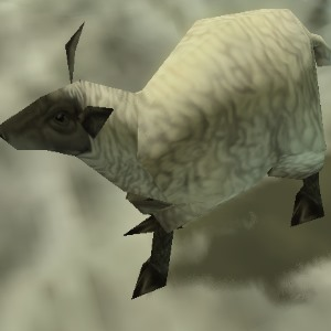 File:Female sheep 2.jpg