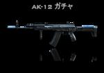 CFJP AK-12