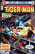 Tiger-Man Vol 1 3