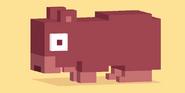 Wombat Old