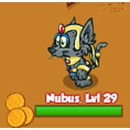 Nubus