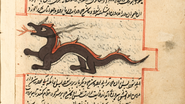 Dragon-islam