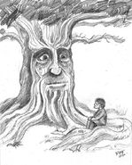 Wise-old-tree