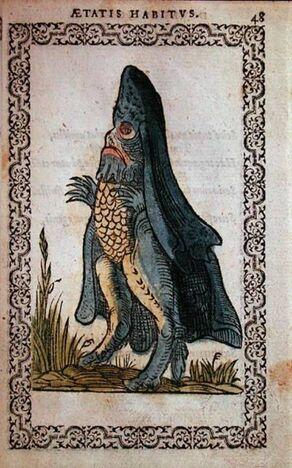 Sea bishop monster omnium fer hi