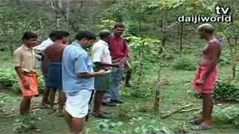 Carnivorous Tree Spotted near Beltangady