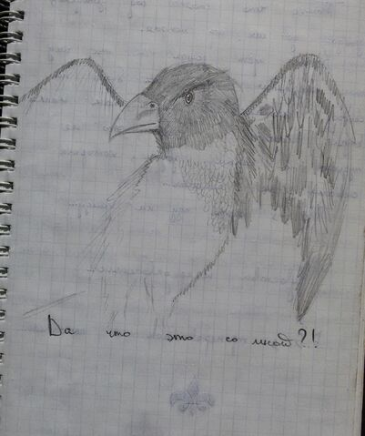 File:The Great Raven Drawing 2.jpg