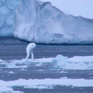Antarctic humanoid 3