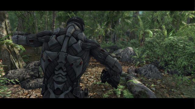 Archivo:Crysis 2012-02-04 20-46-18-85.jpg