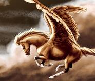 Tan Pegasus