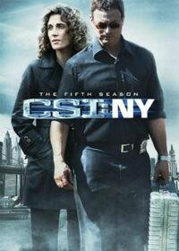 CSI NY Season Five