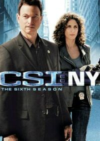 CSI NY Season Six