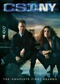 CSI NY Season One