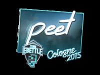 Csgo-col2015-sig peet foil large