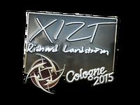Csgo-col2015-sig xizt foil large