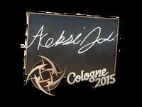 Csgo-col2015-sig allu large