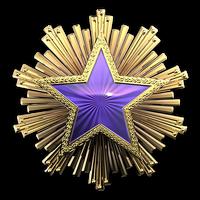 Csgo-service medal 2016 4