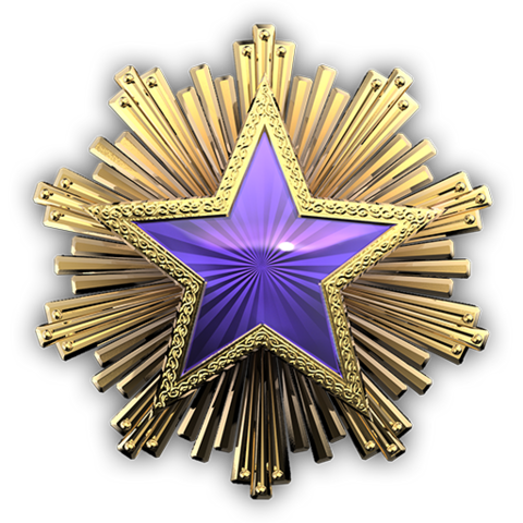 File:Csgo-service medal 2016 4.png