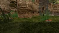 Cz downed landmines bridge