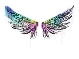 File:Wings large.png