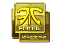 Csgo-dreamhack-2014-fnatic-gold