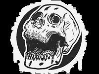 Skull large