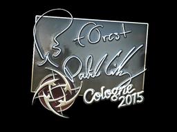 File:Csgo-col2015-sig forest foil large.png