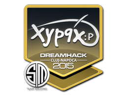 File:Csgo-cluj2015-sig xyp9x large.png