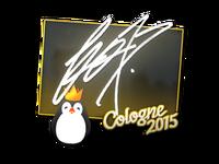 Csgo-col2015-sig fox large