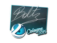 Csgo-col2015-sig boltz large
