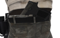 P p250 holster t