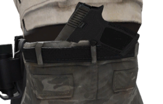 File:P p250 holster t.png