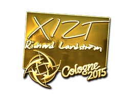 File:Csgo-col2015-sig xizt gold large.png