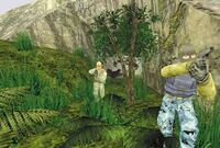 GS Dschungel 03