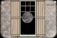 Moon roots window