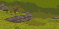 Drylands (Biome)