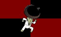 Riaflag1a