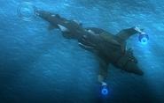 Dolphin III surfacing