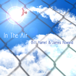 File:In The Air.png