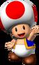 Toad Artwork - Mario Party 6